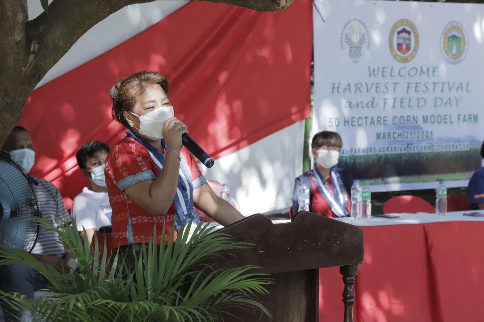 DA Conducts Harvest Festival in 50-ha Corn Model Farm in Balungao Town